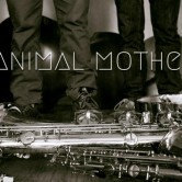 ANIMAL MOTHER – 8PM & 10PM